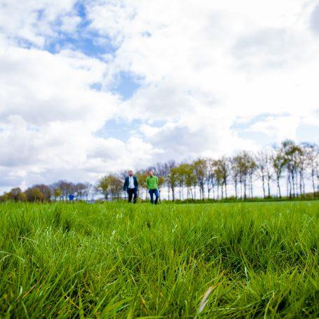 Fiscale gevolgen vergoeding zonneweide